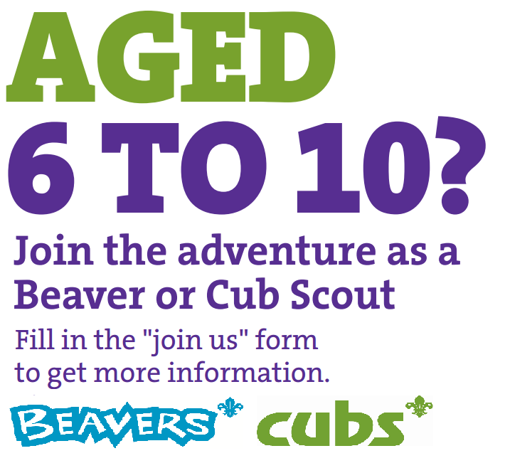cubs and beavers